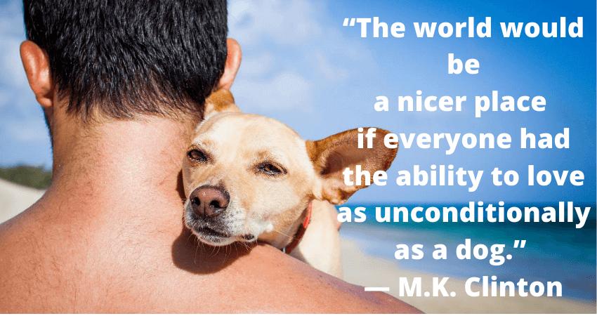 amazing_dog_facts