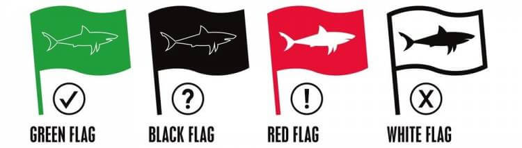 types_of_sharks